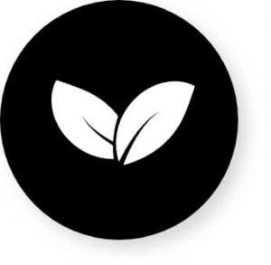 Bois écologique avec co2 neutre